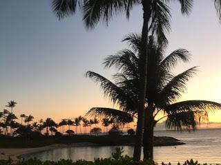 Hawaii on a Budget with kids