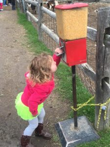 Best Hudson Valley Farms with Kids