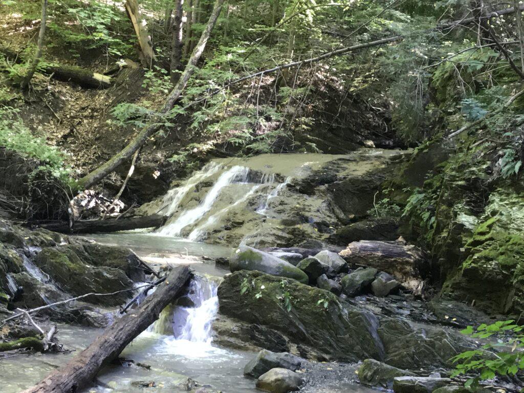 Bloomingdale Brooke Waterfall Trail